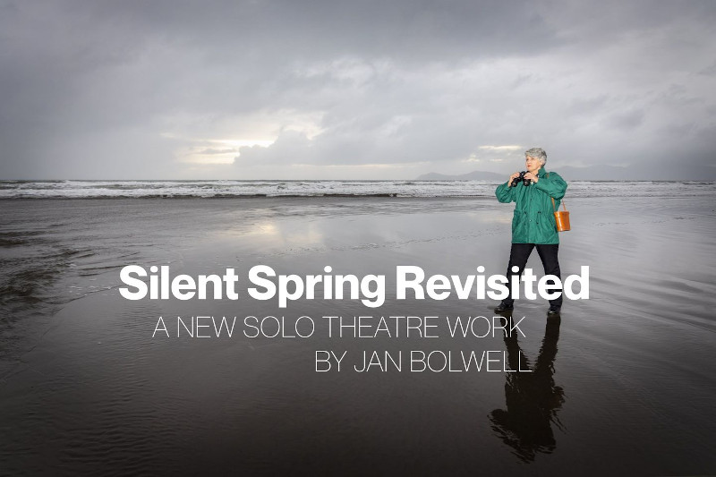 Silent Spring, Jan Bolwell 2021